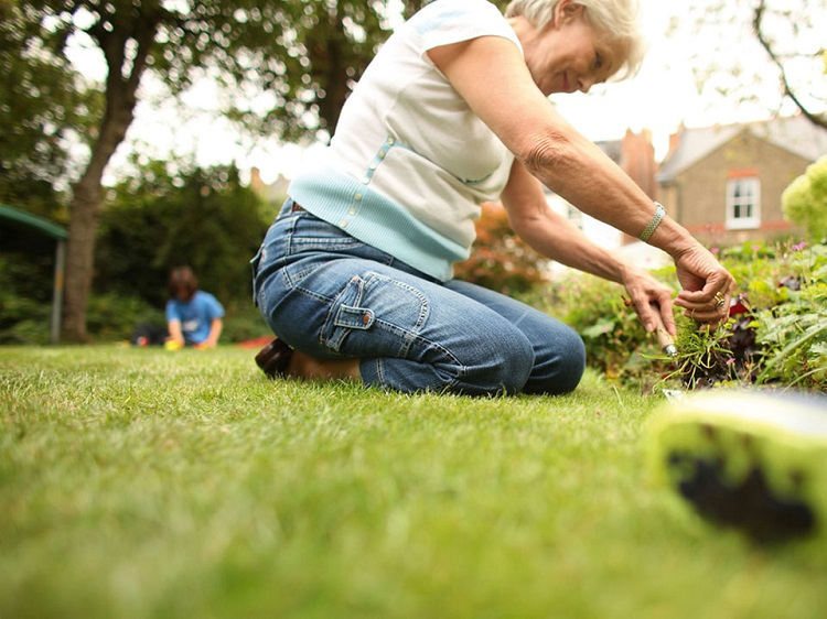 Resultado de imagen para mayores en jardineria