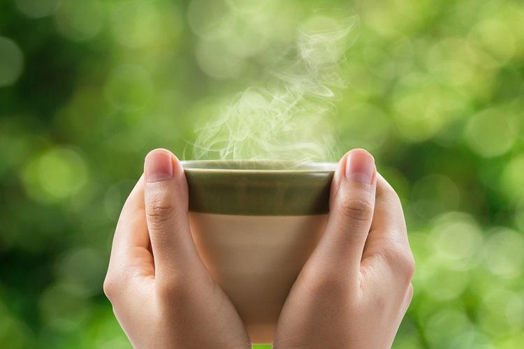 Café Verde Para Perder Peso Funciona